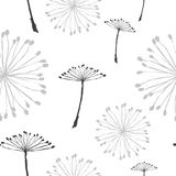 Dandelion Pattern Stock Photo