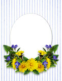 Dandelion and periwinkle flowers arrangement and a card. On white and blue striped background stock image
