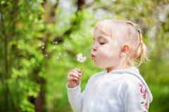 dandelion podmuchowa dziewczyna trochę zdjęcie royalty free