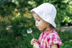 dandelion podmuchowa dziewczyna trochę Obrazy Stock