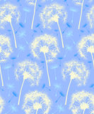 Dandelion Repeater Pattern Background Blue. This is a Dandelion Pattern that repeats like wallpaper. It is in a modern blue color scheme designed to signify vector illustration
