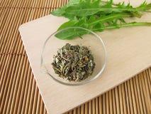 Dandelion root and leaves. Taraxaci radix herba stock photos