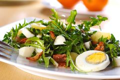 Dandelion salad. With potato and eggs Stock Images