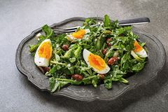 Dandelion salad with eggs and beans Royalty Free Stock Photography