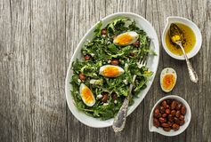 Dandelion salad with eggs and beans Stock Image