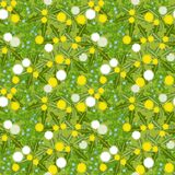 Dandelion seamless texture Royalty Free Stock Images