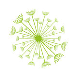 Dandelion seed decoration icon. Vector illustration design Royalty Free Stock Photography