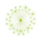 Dandelion seed decoration icon Stock Photo