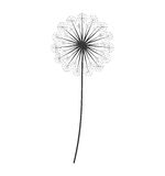 Dandelion seed decoration icon Royalty Free Stock Photos