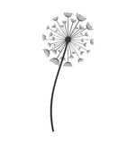 Dandelion seed decoration icon Stock Images