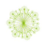 Dandelion seed decoration icon Royalty Free Stock Images