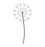Dandelion seed decoration icon Stock Image