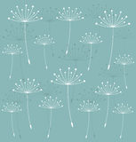 Dandelion seeds background Stock Photos