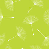 Dandelion seeds pattern. Seamless background illustration with flying dandelion seeds Royalty Free Stock Photography