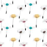 Dandelion seeds on white background Royalty Free Stock Photos