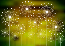 Dandelion silhouettes on blurry background Royalty Free Stock Images