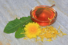 Dandelion syrup. Dandelion sweet honey Royalty Free Stock Photography