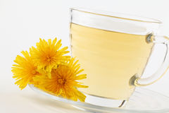 Dandelion tea Royalty Free Stock Image