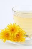 Dandelion tea Stock Photography