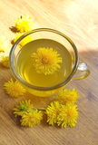 Dandelion tea with flowers Royalty Free Stock Photography