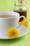 Dandelion tea with honey Royalty Free Stock Photo