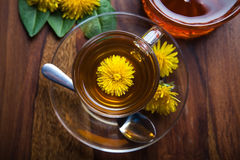 Dandelion tea with honey, yellow blossom in tea cup Stock Images