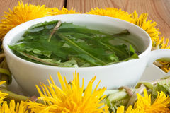 Dandelion tea - hot water poured over fresh dandelion leaves Royalty Free Stock Image