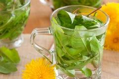 Dandelion tea - hot water poured over fresh dandelion leaves Stock Photography