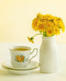Dandelion tea Stock Images