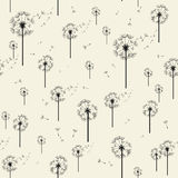 Dandelion Vector Seamless Pattern. Modern Stylish Texture Stock Images