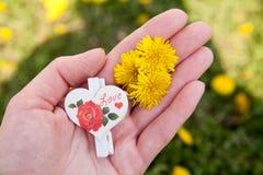 Dandelion w ręce Zdjęcie Stock