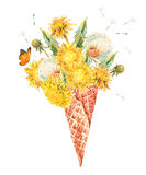 The dandelion in waffle cone. Watercolor bouquet of fresh dandelions in the waffle cone natural floral greeting card isolated on white background Royalty Free Stock Photography