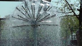 Dandelion of water. A dandelion of water cools stock video footage