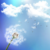 Dandelion. On the wind scatters, vector art illustration vector illustration