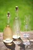 Dandelion wine Royalty Free Stock Image
