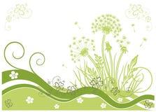 Dandelion, wiosna Fotografia Stock