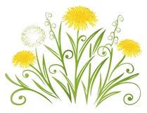 Dandelion, wiosna Zdjęcia Royalty Free