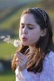 Dandelion wish Royalty Free Stock Photo
