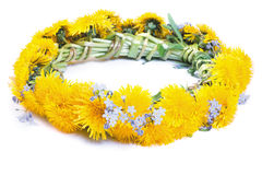 Dandelion wreath on a white Stock Images