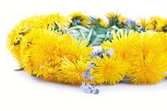 Dandelion wreath on a white Stock Photo