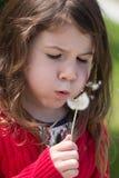 dandelion życzenie Obrazy Royalty Free