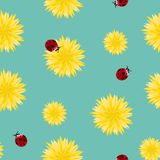 Dandelion yellow flowers and red ladybugs seamless pattern. Surface floral art design. Great for vintage fabric, wallpaper, giftwr. Dandelion yellow flowers and Stock Photo