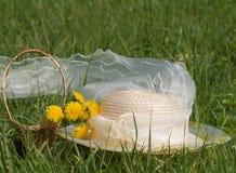 dandelions życia wiosna wciąż zdjęcia royalty free