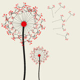Dandelions. Vector dandelions suits for your holiday greetings Royalty Free Stock Photo