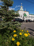 Dandelions on the background of the old Church. Arkhangelsk, North of Russia Royalty Free Stock Image