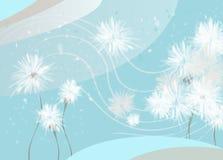 Dandelions blue Stock Image