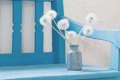 Dandelions on blue bench Stock Image