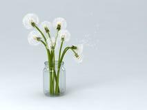 Dandelions in bottle Stock Photo
