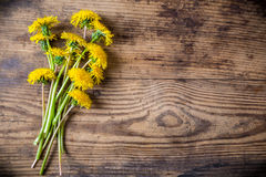 Dandelions on brown wood texture Stock Images