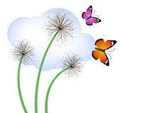 Dandelions and butterflies Royalty Free Stock Photography